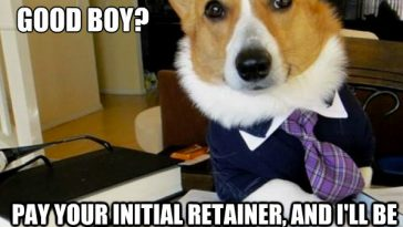 Lawye Dog